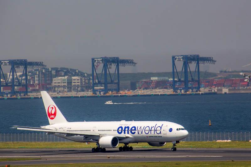 JAL 特別塗装機「one world」